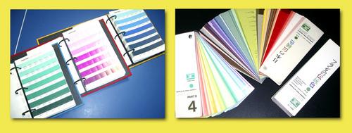 color guide.jpg